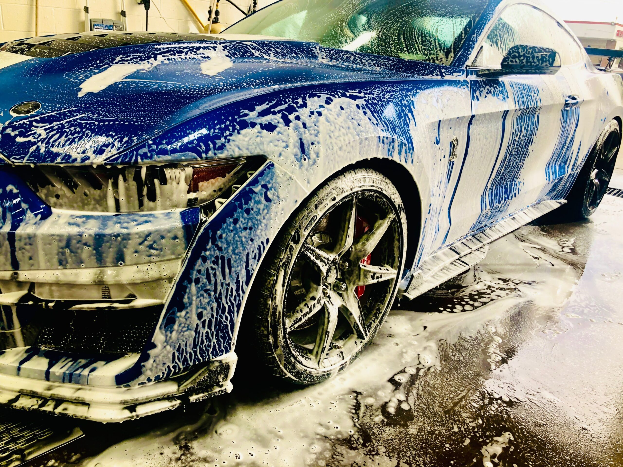 Blue Shelby GT Detail at Pro Auto Spa Colorado Springs